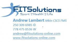 fitsolutions-sig-1